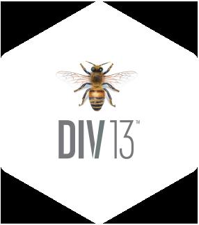 DIV13